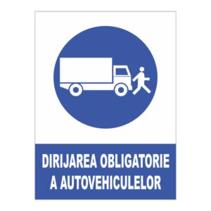 indicator dirijare autovehicule