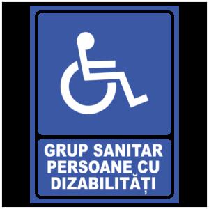 indicator grup sanitar persoane cu dizabilitati